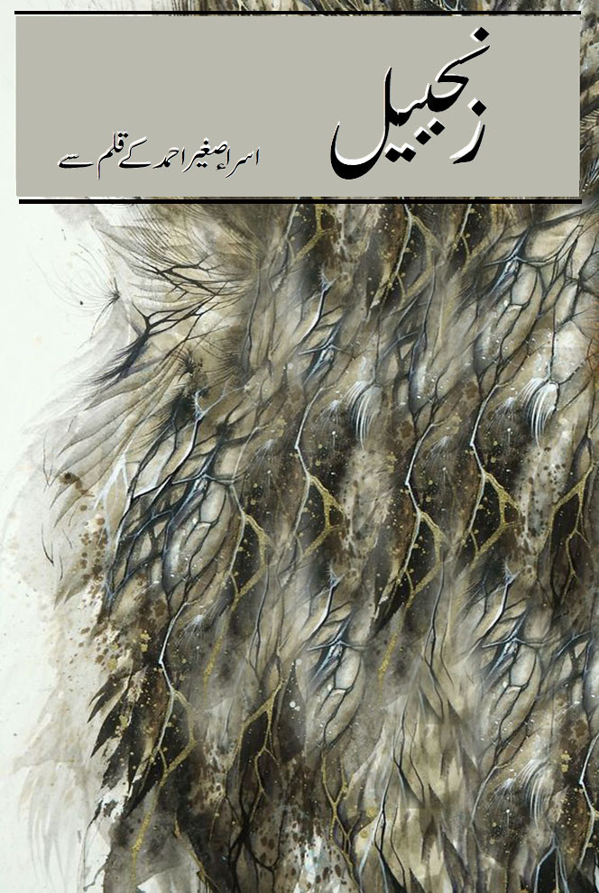 Zanjbeel is a romantic and social urdu novel by Isra Saghir Ahmed.
