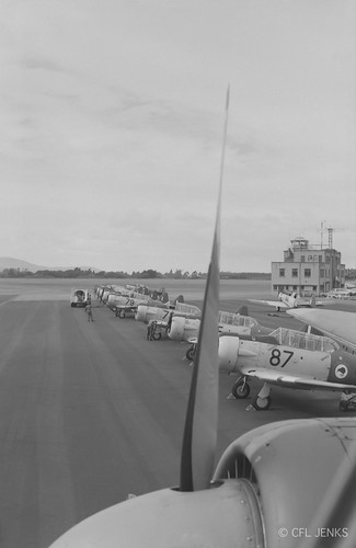 4 December 1975, Harvard line-up viewed from atop RNZAF 1 Squadron Bristol Freighter NZ5911 at Wigram