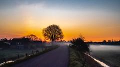 Lonely cyclist - Steinsedijk - Haastrecht - NL 🇳🇱