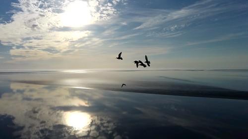 Waddenzeee - Ter hoogte van de Kop van de Afsluitdijk