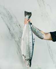 Man holding a gray fish - Credit to https://homegets.com/