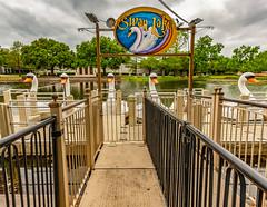Swan Lake, Fair Park