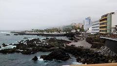 Puerto de la Cruz. Tenerife (Islas Canarias).