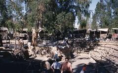 1954 Covered Wagon Knotts Berry Farm