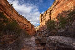 Ribbon Canyon (4-15-20)