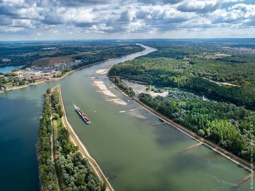 Tomateninsel im Rhein bei Au am Rhein