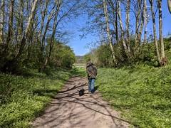 Path to River Tweed at Wark, April 2020