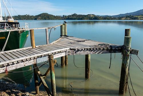 Coromandel Wharf, New Zealand
