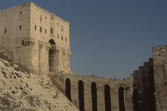 200712_syria_scan_60