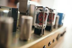 Guitar amplifier tube closeup.