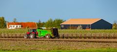Muck Spreading Beside the A58/E312  Kruiningen-Netherlands 17/04/2020.