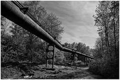 Pipelines in Duisburg (III)