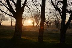 Sunrise @ Route de Frenay @ Éloise