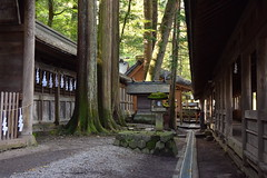 Suwa Taisha Shrine