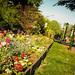 Nature&fleurissement-036-170320-GV