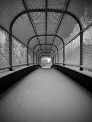 Overpass in Snow