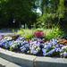 Nature&fleurissement-058-170320-GV