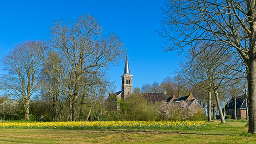 Village View in Spring