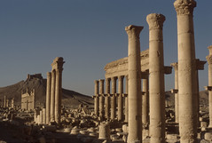 200712_syria_scan_91
