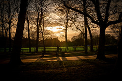 Sunset in Locked Down London Park