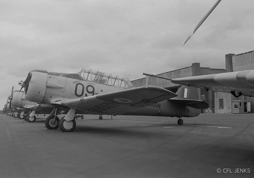 14 February 1976, RNZAF Harvard NZ1009 in a line up of Harvards at Wigram