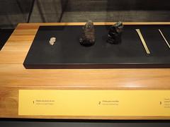 Costa_Rica_Gold_museum_San_Jose_JH_043