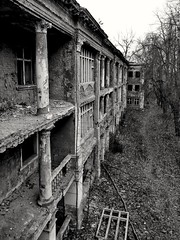 decay and prospect