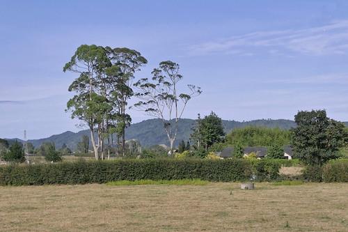 Auckland - Rotorua_1770876_dxo