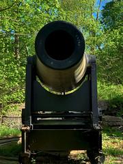 Loooking Down the Barrel of a BIG Gun