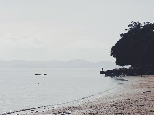 Isolation 🇳🇿