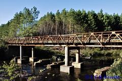 Pontes da serra gaúcha e catarinense