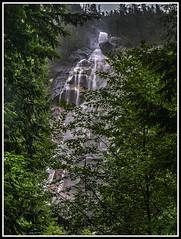 Shanon falls