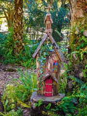 Bok Tower Gardens-Hammock Garden_2020