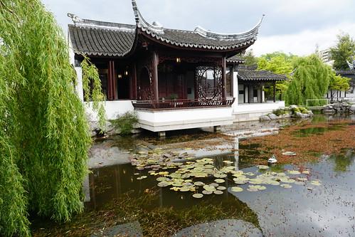 Lan Yuan Chinese Gardens, Dunedin