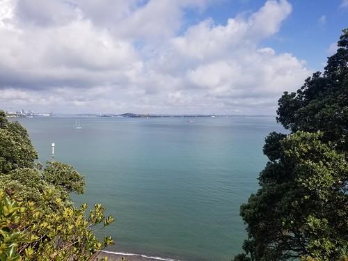 Auckland (11)