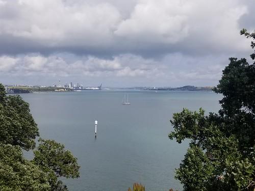 Auckland (14)