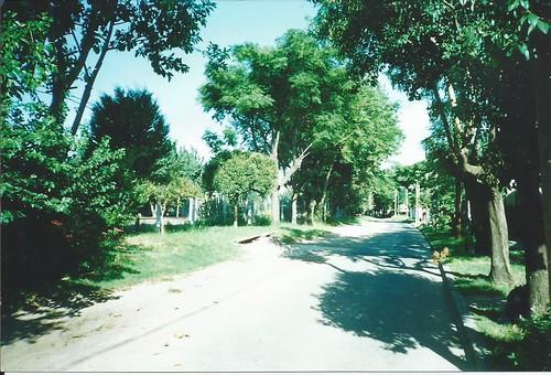 9 De Julio Carapachay 1998
