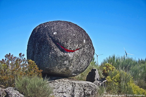 Peixe Pedra - Mezio - Portugal 🇵🇹