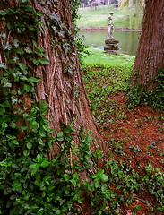 "Cincinnati - Spring Grove Cemetery & Arboretum ""Egeria - Roman Goddess Of Childbirth & Water"""