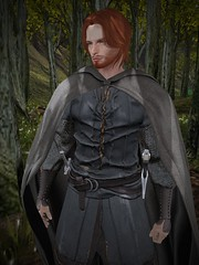 SL Game of Thrones RP at Highgarden sim