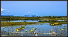 South Cariboo