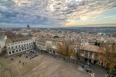 Avignon as seen from the Palais des Papes