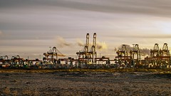 Euromax terminal - Maasvlakte - Port of Rotterdam