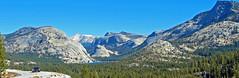 Keep Your Eyes on The Road, Tenaya Lake, Yosemite 2018