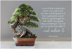 John Lennon ...love is life a precious plant. You can't just accept it and leave it in the cupboard, or just think it's gonna get on with itself. You gotta keep watering it. You've got to really look after it...and nurture it