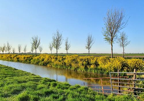 Beemster polder, Unesco world heritage (The Netherlands)