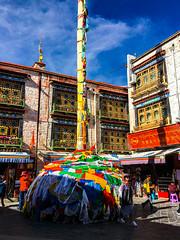 Barkhor street, Lhasa, Tibet, 拉萨, 西藏