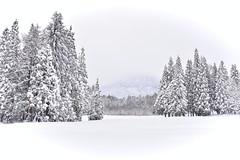 Myoko winter landscape