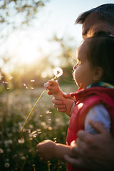 Adorable young girl blowing on a dandelion.