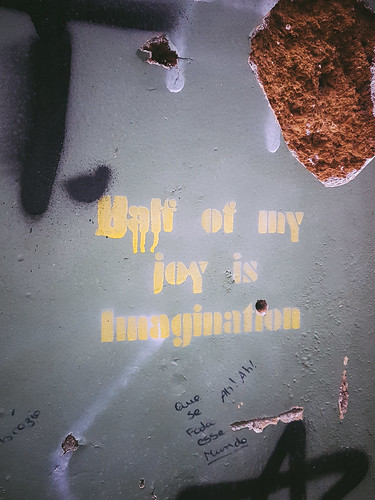 Half of My Joy is Imagination